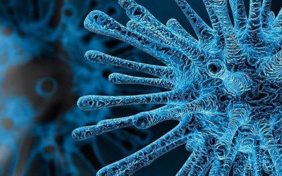 Cómo nos afecta el Coronavirus